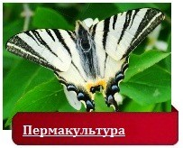 пермакультура Зеппа Хольцера