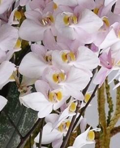Работа на дому - цветы из полимерной глины