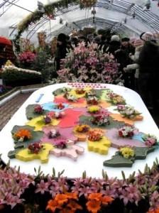 выставка цветов в Ижевске