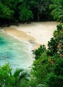 остров под заповедник