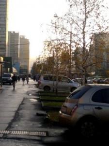 В России продолжаются махинации с госзакупками