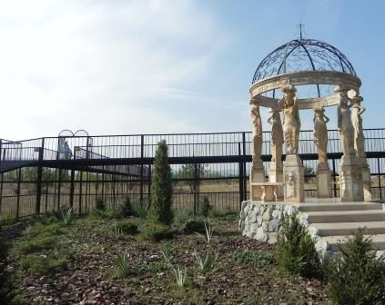 Парк львов: новые бизнес идеи по поводу заброшенных полей