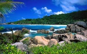 Особенности оффшора на Сейшельских островах