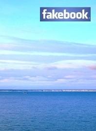 Facebook привлек миллион рекламодателей
