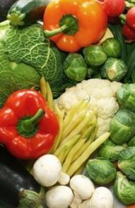 Бизнес по выращиванию зелени и овощей