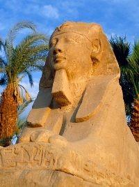 Туроператоры европейских стран рекомендуют туристам не посещать Египет