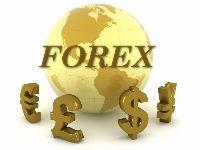 Форекс – выгодный бизнес современности
