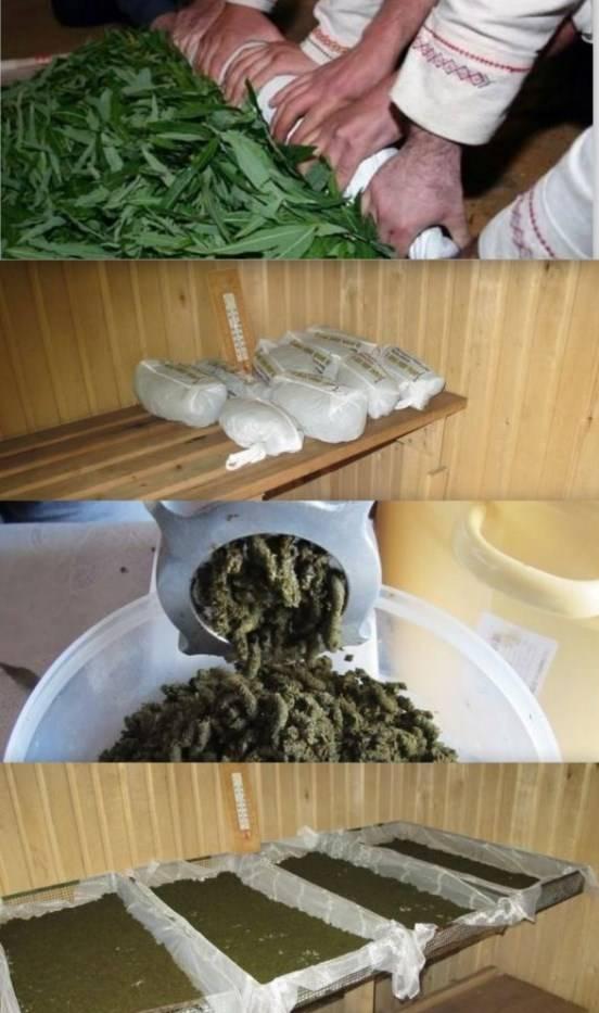 Процесс приготовления копорского чая