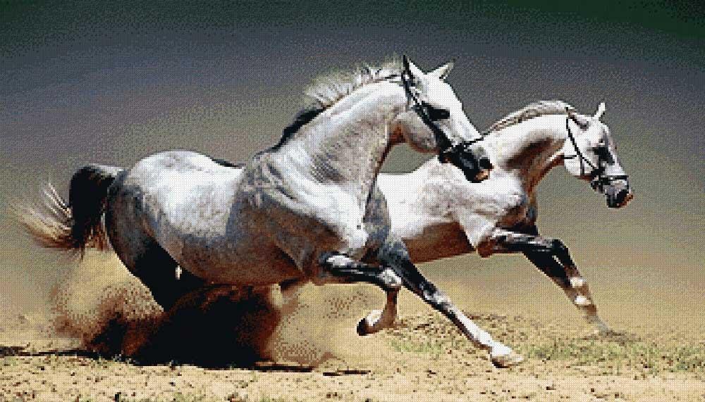 Вышивка крестиком лошади нитками мулине - большая схема.